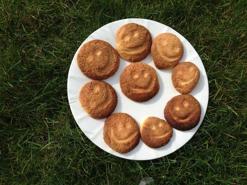 biscottired